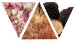 Цветочный древесно-мускусный